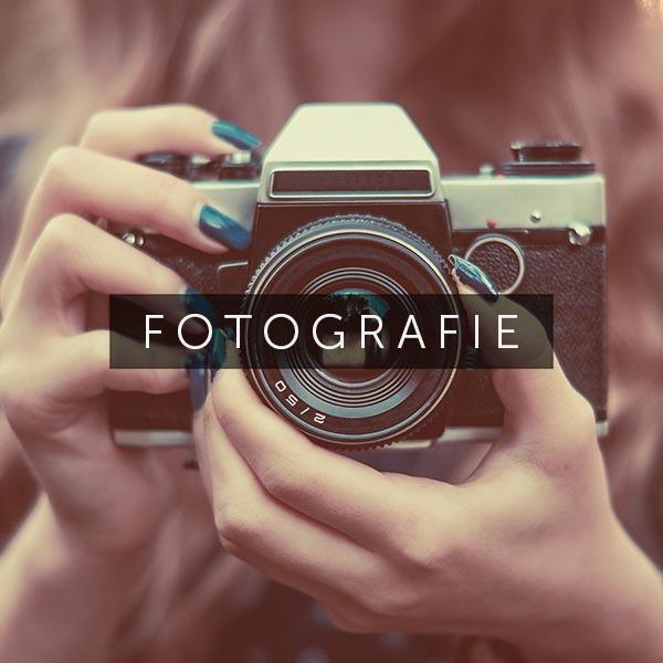 Fotografie - Bild: finwal89 – stock.adobe.com