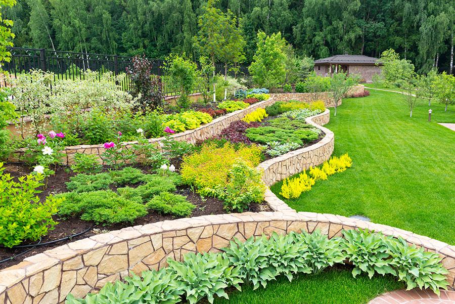 Steingarten im herkömmlichen Sinne: Pflanzen und Mauerwerk tauschen sind ab. Der Grünanteil überwiegt