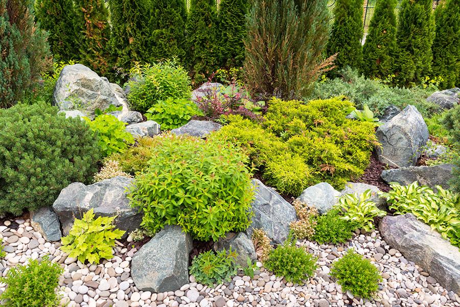 Steingarten mit Pflanzen und Schotter im Gleichgewicht.